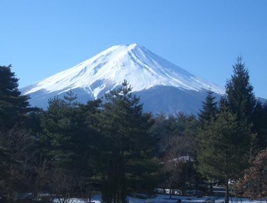 7 Night 8 Days Japan Circle Tour