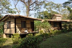 Gaida Wild Life Camp - Chitwan